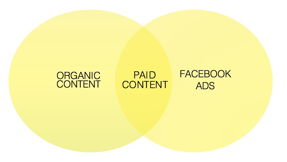 websavant-organic-content-paid-ads